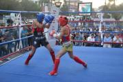 Tatvan'da Muaythai - Kickboks şampiyonası düzenlendi